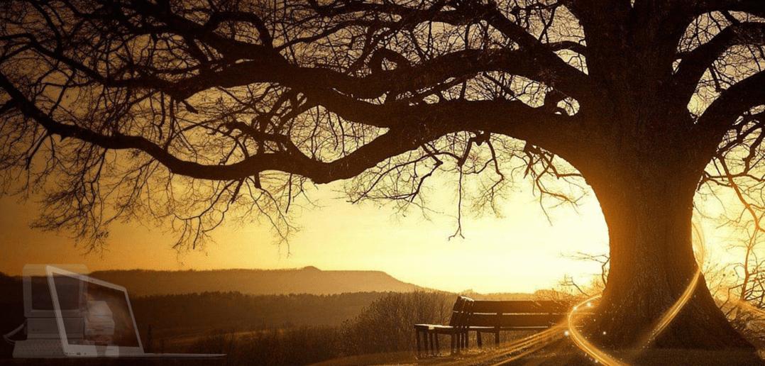Customer Story – Family Tree Maker