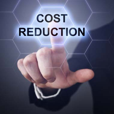 reduce IT costs