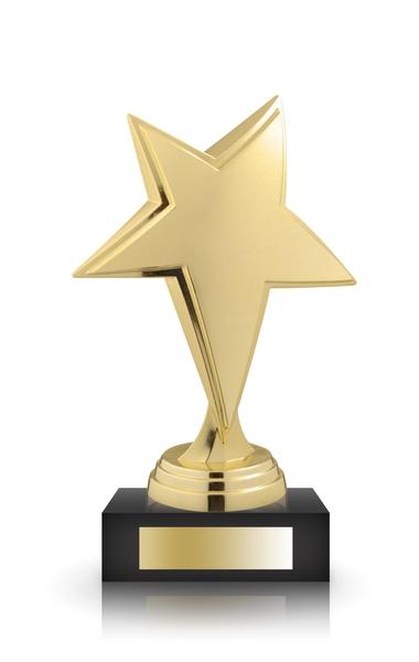 Best Partner Program Award