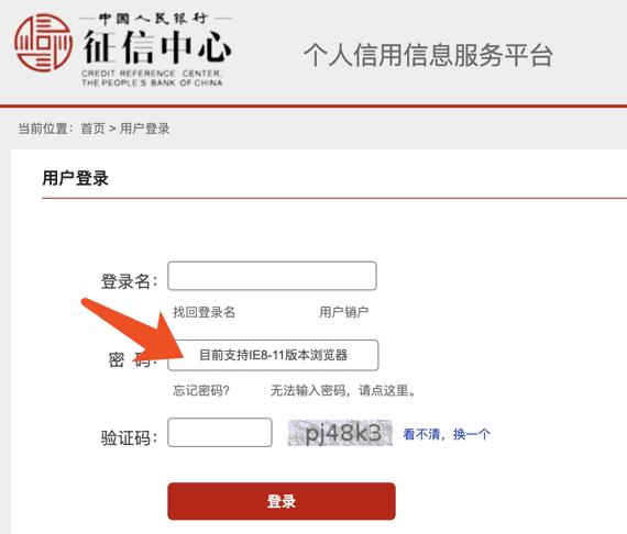 在Mac上使用IE浏览器