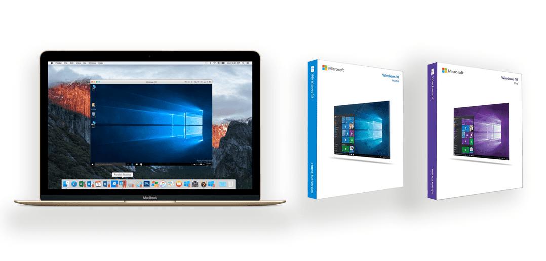 Welche Version soll ich kaufen – Windows 10 Home oder Pro?